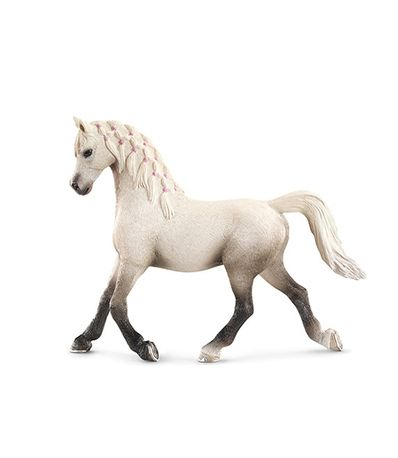 Figura-egua-Arabe