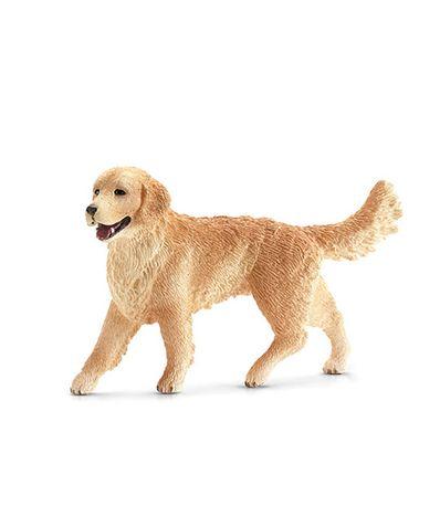 Golden-Retriever-Dog-Figura-Feminina