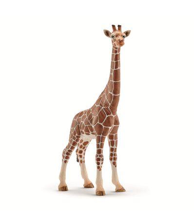Figura-girafa-femea