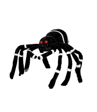 aranha-preta