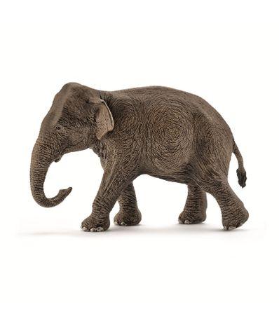 Figura-de-Elefante-Asiatico-Hembra