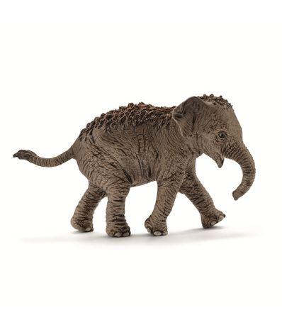 Figura-Breeding-elefante-asiatico