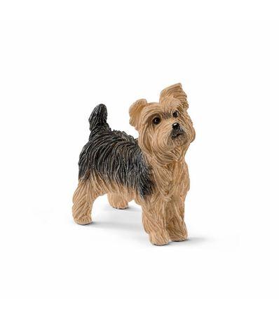 Figura-Yorkshire-terrier