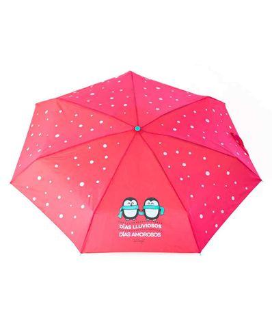 Paraguas-Pequeño-Dias-Lluviosos