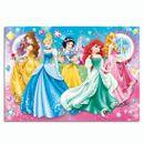 Princesses-Puzzle-Brillant-de-104-Pieces
