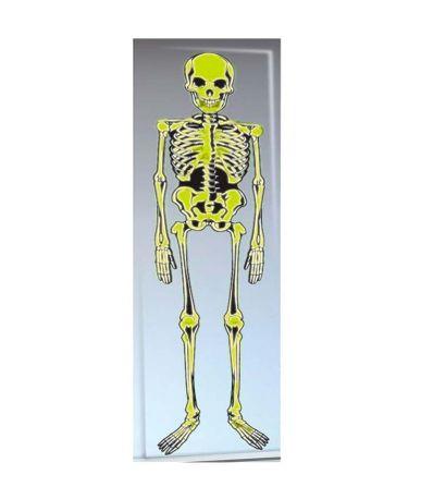 Squelette-fluorecent-decoration