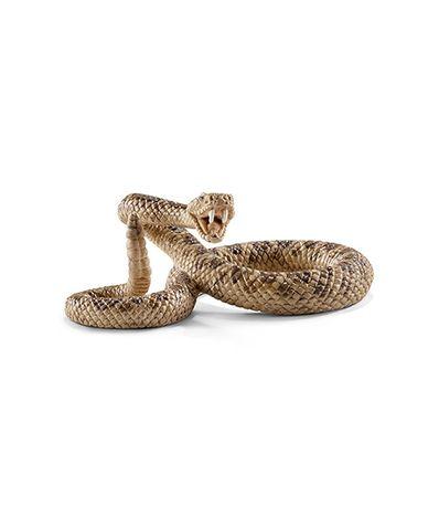Figure-Rattlesnake