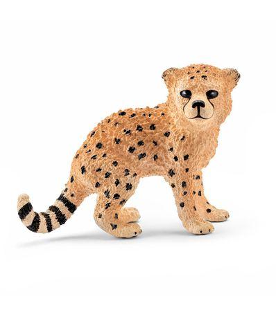 Figure-de-reproduction-de-guepard