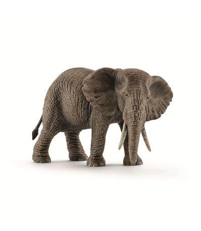 Figure-feminine-Elephant-d--39-Afrique
