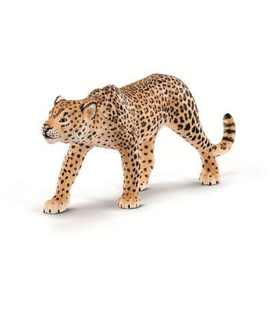 Figure-Leopard