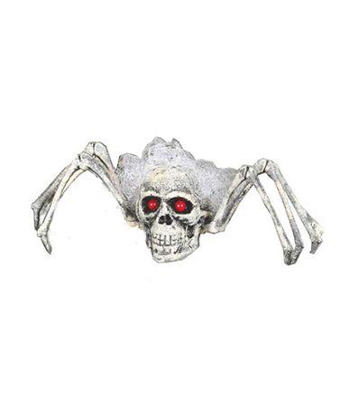 Araignee-Squelette