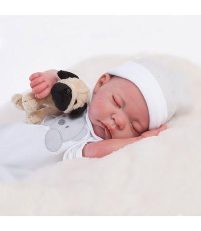 Reincarne-bebe-reve