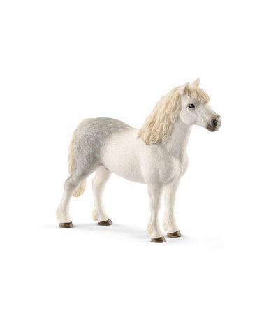 Fig-etalon-Welsh-poney