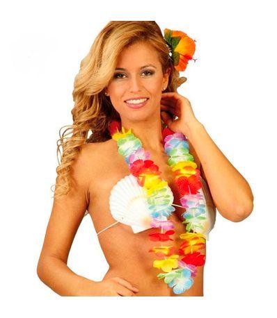 Accessoire-Carnival-Hawaiian-Collier-Multicolore