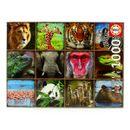 Puzzle-Collage-de-Animales-Salvajes-de-1000-Piezas