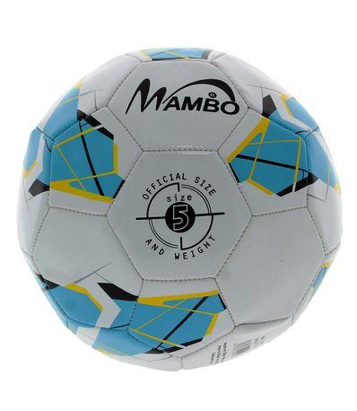 Match-de-ballon-de-football-D-220