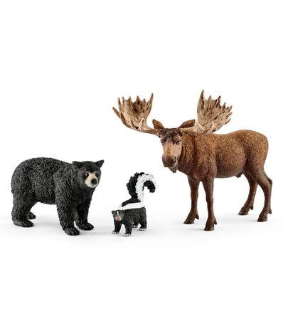 Figuras-de-animais-das-florestas-na-America-do-Norte