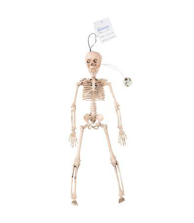 Esqueleto-con-Luz