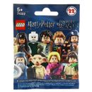 Lego-Harry-Potter-A-propos-de-la-surprise