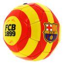 Ballon-moyen-du-FC-Barcelone-en-Catalogne