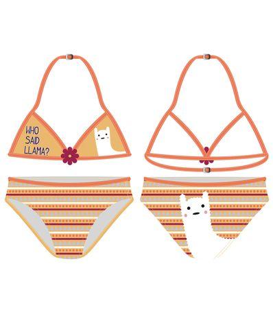 Bikini-Triangulo-Llama