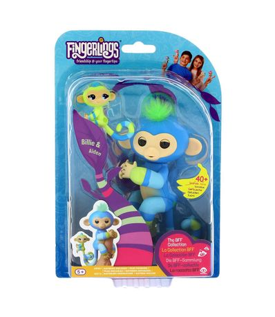 Macaco-Azul-de-Mosquito---monito