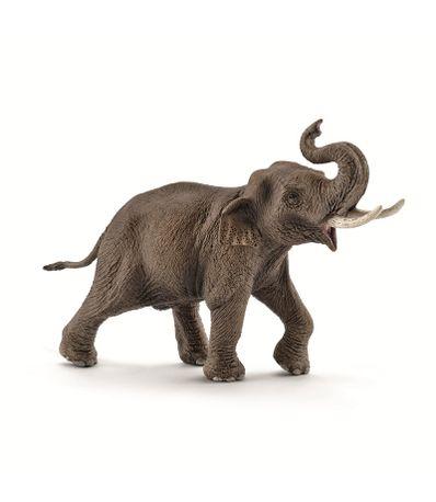 Figura-de-Elefante-Asiatico-Macho