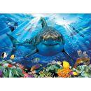 Puzzle-500-piezas-El-Gran-Tiburon-Blanco