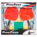 Pacote-Ping-Pong