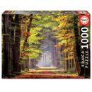 Puzzle-Marche-d--39-automne-1000-pieces